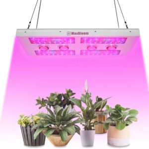 T12 LED grow light