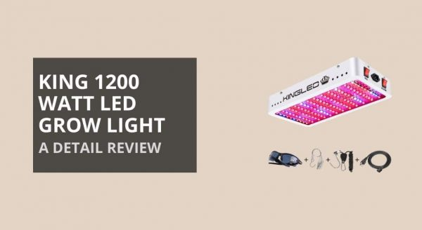 King 1200w LED Grow Light Review