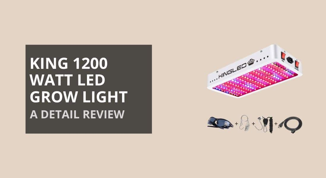 🥇 King 1200w LED Grow Light Review (2020) – Best or Not?