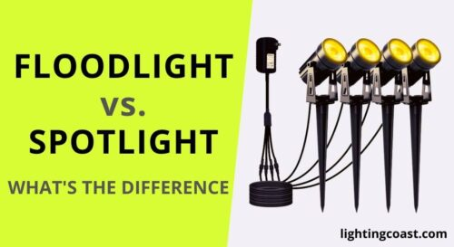 Spotlight vs. Floodlight | The Essentials You Need to Know
